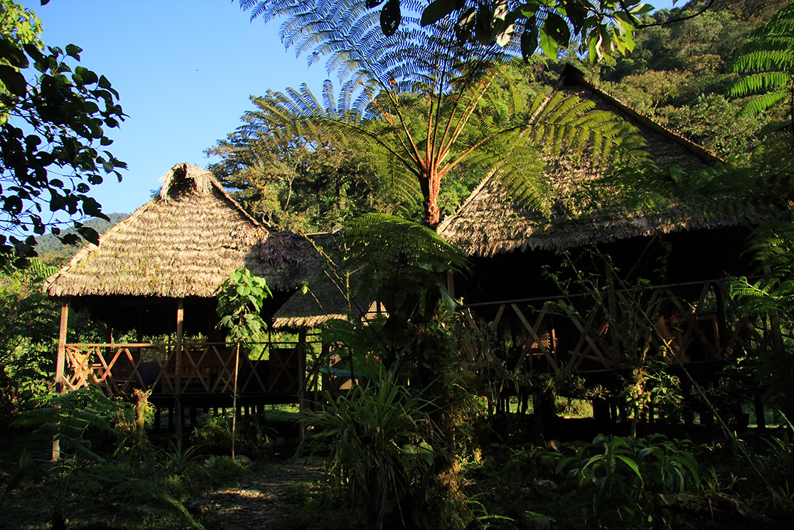 Lodge in the Cloudforest - Andean Spirit